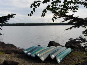 canoesinarow